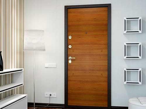 На фото внутренняя входная дверь