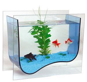 aquarium-03