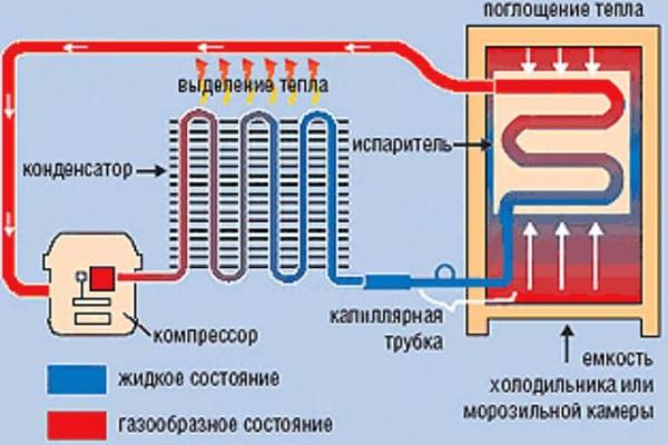 Схема работы холодильной камеры