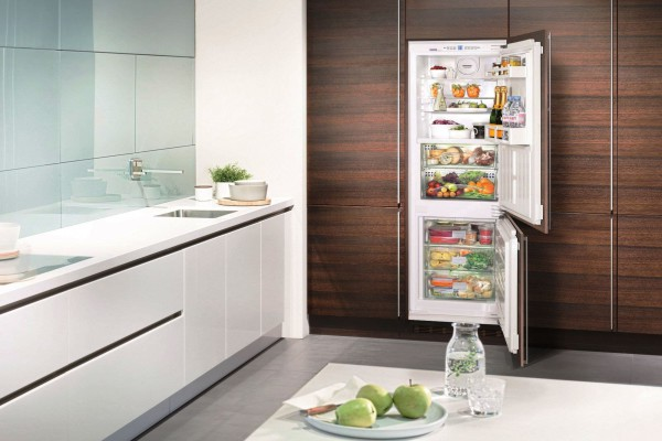 Встраиваемый двухкамерный холодильник с системой no frost