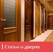 icon_dveri