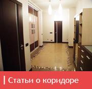 icon_sanuzel