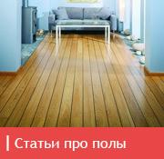 icon_pol