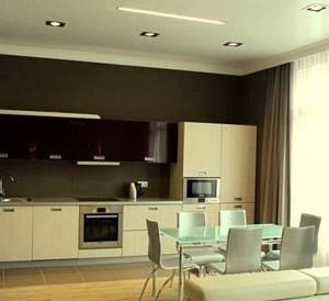 кухня-гостиная 20 кв