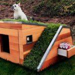 Как построить будку для собаки своими